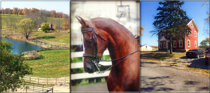 Outdoor Areas Corinthian Equestrian Center Cec Llc