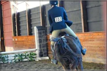 Angela Koulikov on Corinthian's Wild Card, aka Carder. Hudson Valley Horse Show at Corinthian's Equestrian Center, March 17-18, 2018.