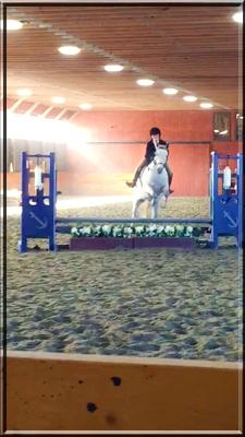 Madison Tamweber on Corinthian's Little Bit, aka Bitty. Hudson Valley Horse Show at Corinthian's Equestrian Center, March 17-18, 2018.