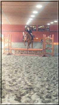 Madison Salisbury on Corinthian's Crimson Hunt, aka Handsome. Hudson Valley Horse Show at Corinthian's Equestrian Center, March 17-18, 2018.