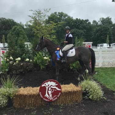 Corinthian's Armani - TB Jumpers Champion, August 2018
