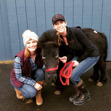And here's Goliath our little rescue - we just had to save him! He's a miniature horse and he loves hugs! Oh, and he smiles on cue!