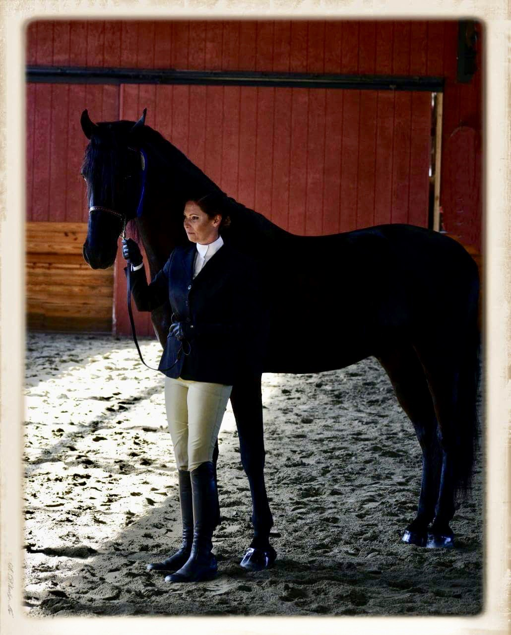 Corinthian Equestrian Center CEC LLC – It's all about the Horses